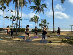 23 Day 200-Hour Hatha Vinyasa Yoga Teacher Training Course in Palomino