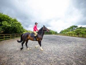 3 Day Horse Riding Holiday on a 400-Year Old Dairy Farm in Wales, UK
