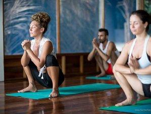 2-Week Online Alignment Yoga Challenge Module 2: Tantric Kriyas Active Meditations