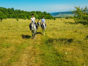 4 Days Weekend Horseback Expedition to Transylvanian Heritage in Romania