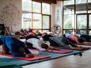 3 Day Summer Mindful Meditation and Yoga Retreat in Kenthurst, New South Wales
