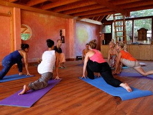 8 Days Meditation and Yoga Retreat in Tenerife, Spain