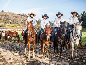 8 Days Haciendas Antiguas Ranch and Horse Riding Holiday in Colombia