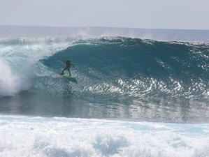 8 Day Exhilarating Surf Camp Sumatra