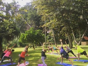 8 Days Deep Healing with EFT & Yoga Retreat Sri Lanka