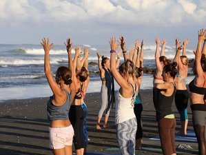 5 Days New Year Meditation and Yoga Retreat in Guanacaste, Costa Rica