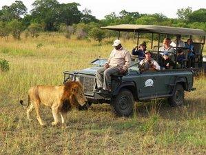 4 Days Budget Safari in Serengeti National Park and Ngorongoro Crater, Tanzania