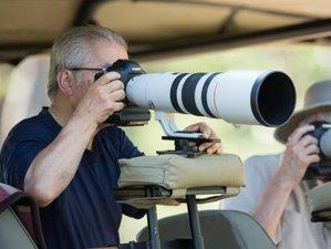 10 Days Solo Photography Safari in Botswana