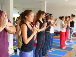 3 Days Massage, Health, Meditation, and Yoga Retreat in Chiang Mai, Thailand
