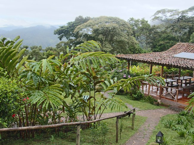 8 Days In the Clouds Yoga Retreat in Nicaragua