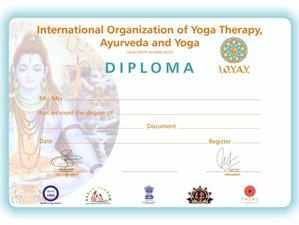 Profesorado de Hatha yoga de 200 horas certificado completamente en línea y a tu ritmo