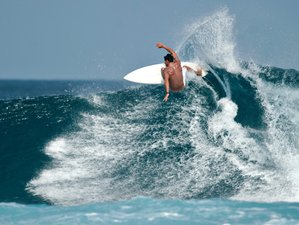 7 Days Intermediate and Advanced Surf Camp in Playa Hermosa, Puntarenas Province, Costa Rica