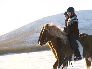 7 Days Family Winter Week on Horseback in Kiruna, Sweden