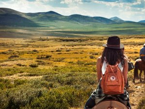 13 Day Horse Riding Adventure Holiday in the Legendary Orkhon Valley, Mongolia