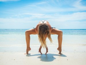 21 Days 200-Hour Luxury Vinyasa Aerial Yoga Teacher Training in Koh Phangan, Thailand