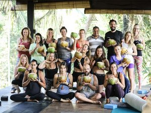24 Day 200-Hour Vinyasa Yin Yoga Teacher Training in Ubud, Bali at a Luxurious Retreat Center