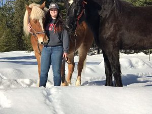 4 Days Ranch Vacation and Horseback Riding Experience in Montana, USA