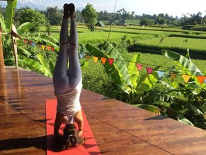 21 Days 200-Hour Blissful Yoga Teacher Training Bali