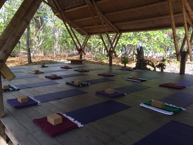 8 Days Surf and Ashtanga Yoga Retreat in Costa Rica