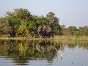 9 Days Okavango Delta and Victoria Falls Camping Safari in Botswana and Zimbabwe