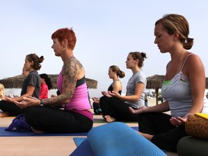 2 Weeks Yoga and Multi-Martial Arts Retreat in Koh Samui, Thailand