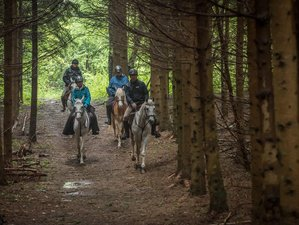 4 Day Olympic Mountains Adults Riding Weekend in Bosnia and Herzegovina