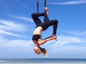 9 Days 50-Hour Aerial Yoga Teacher Training in Koh Phangan, Thailand