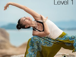 Self-Paced 8 Trigram Qigong Online Master Course Level 1