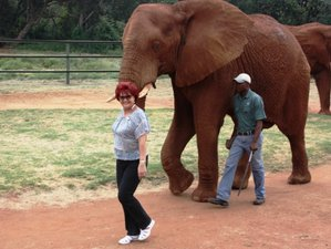 3 Days Direct Interaction on the Wild Side Safari in South Africa