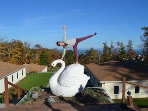 4 Days Fall Yoga Retreat North Carolina