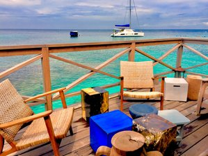 7 Days Catamaran SUP and Kitesurfing in Saint Vincent and the Grenadines