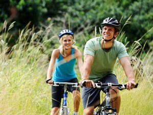 7 Days Roundtrip Europe Route Bike Holiday in Germany and Luxembourg