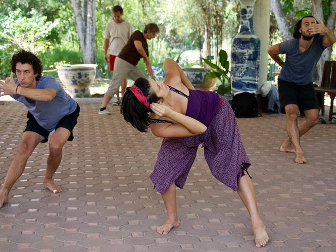 20 Days Complete Dynamic 5 Animal Flow Medical Qigong Teacher Training in Chiang Mai, Thailand