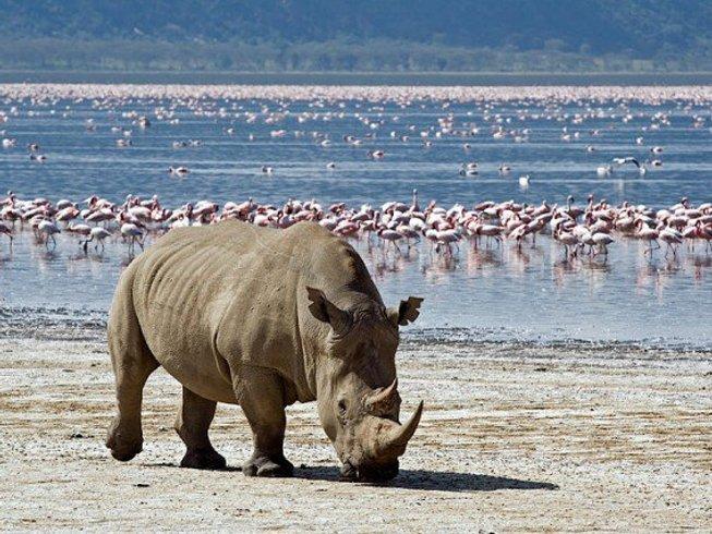 9 Days Budget Kenya Safari in Aberdare, Samburu, and Maasai Mara