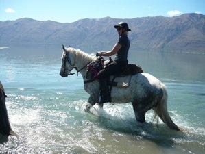 9 Days Twin Lakes Horseback Riding Holiday in New Zealand