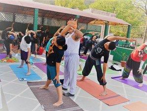"""22 Tage """"Entwicklung weiblicher Natur"""" Frauen Yoga Retreat Rishikesh, Indien"""