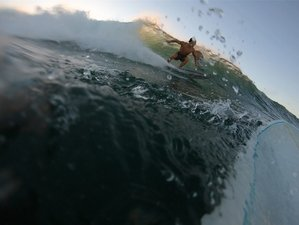 7 Day Surfing Holiday in World Class Surfing Spot in Waialua, Hawaii