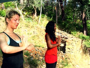 7 Days 'Turning Inward' Autumn Yoga Retreat