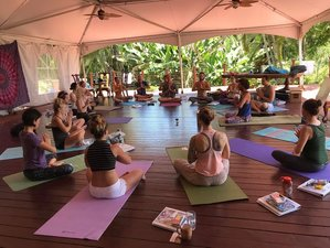 44 Days 500-Hour Yoga Teacher Training in Maui, Hawaii, USA