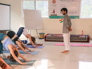 30 Day 300-Hour Hatha, Ashtanga, Vinyasa Yoga Teacher Training in Rishikesh
