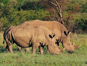 14 Days Marvelous Camping Safari in Botswana