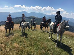8 Day Amazing Horse Riding Holiday in Central Balkan National Park