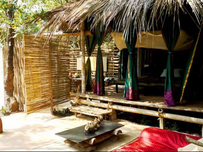 15 días retiro de yoga, sonido y creatividad en Goa y Tiruvannamalai, India