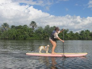 7 Day All Levels SUP Camp in the Preguiças River, Maranhao