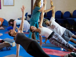 8 Days Bridge to Ananda Yoga Therapy Training in Northern California, USA
