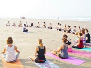 25 Days 200 Hour Ashtanga and Vinyasa Fusion Yoga Teacher Training in Goa, India