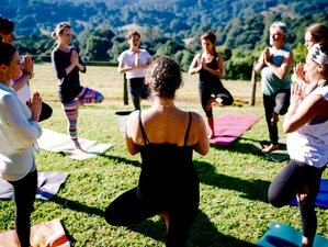 6 Days Organic Gardening and Yoga Retreat in Byron Bay, Australia