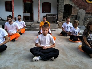 15 Day Physical and Cultural Development with Shaolin Kung Fu for Children in Dengfeng, Henan