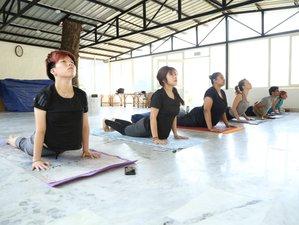 14 Day 100-Hour Online Ayurveda Yoga Teacher Training