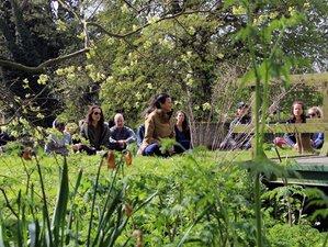 3 Day Autumn Cleanse Meditation and Yoga Retreat Warwickshire, UK
